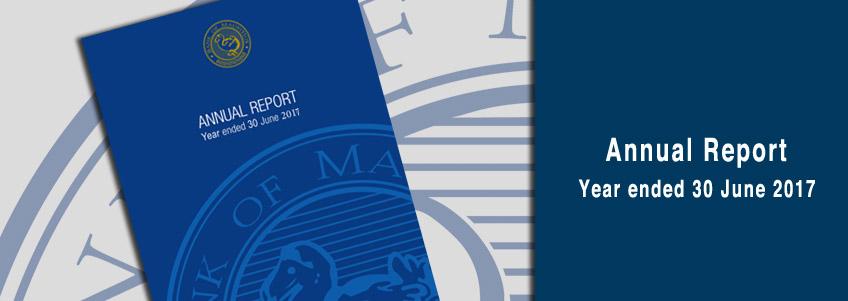 Annual Report June 2017